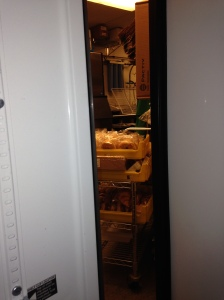 Day 79: Be locked in a freezer.